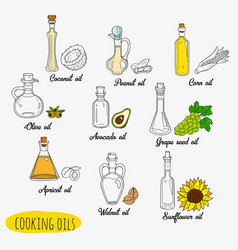 9 isolated doodle cooking oils vector
