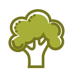 green organic fresh broccoli isolated flat cartoon vector image vector image