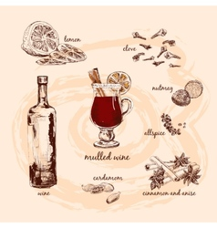 Mulled wine and its components vector image