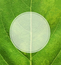 Green Leaf Texture With Label vector image