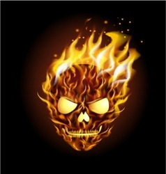 Scary skull on fire vector image