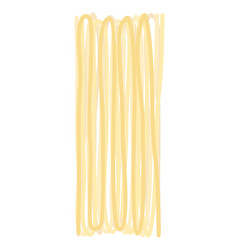 spaghetti dry isolated raw pasta on white vector image