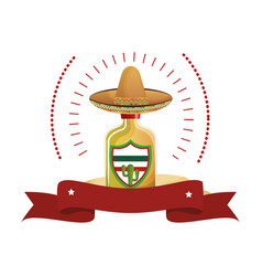 Colorful arch bottle of tequila with mexican hat vector
