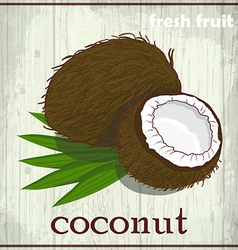 Hand drawing of coconut Fresh fruit sketch vector