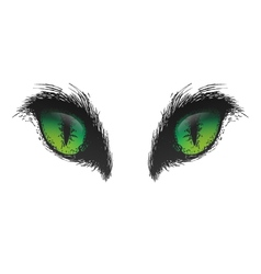 Hand drawn cat eyes eps10 vector