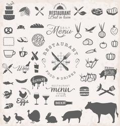 Restaurant Menu and Food Design Elements vector image