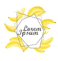 summer fruit composition banana vector image