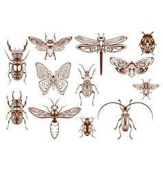 Brown tribal insects for tattoo or mascot design vector image