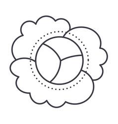 cauliflower line icon sign vector image