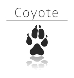 Coyote animal track vector