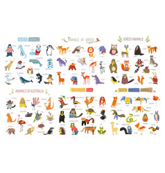 Cartoon animals and birds different continents vector