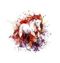 Color of a horse vector