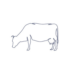 hand drawn cow isolated on white background vector image