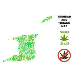 Royalty free cannabis leaves mosaic trinidad and vector