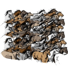 Sketch of horse running vector image vector image