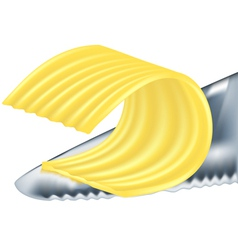 cheese or butter vector image vector image