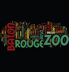 Baton rouge text background word cloud concept vector