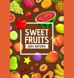cartoon fruits and berries farm and garden food vector image
