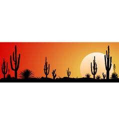 Mexico desert sunset vector