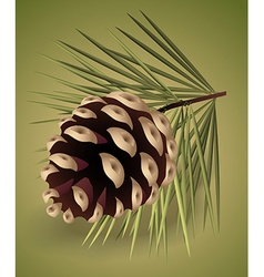 Pinecone vector