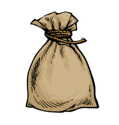 old canvas sack full of money vector image