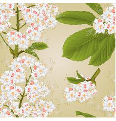 Seamless texture chestnut tree flowers vector