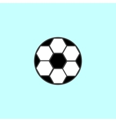 Soccer ball with black and white hexagons sport vector image