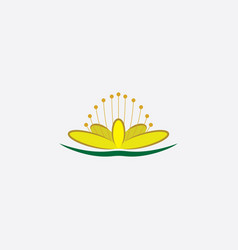 st johns wort flower plant icon vector image