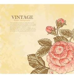 Vintage flower on grunge background vector