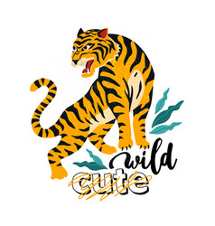 wild no cute of tiger with vector image