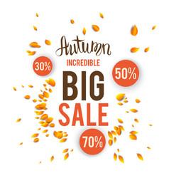 autumn sale card vector image vector image