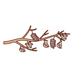 autumn branch of tree and leaves seasonal vector image