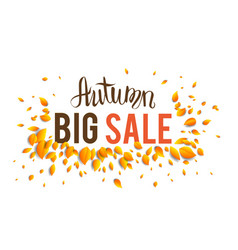 Big fall sale vector