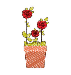 Color pencil drawing of flowered red roses planted vector