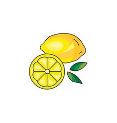 lemon icon on a white background vector image