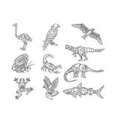 mechanical animal set sketch vector image