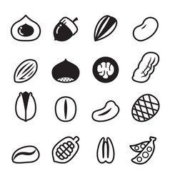 Nut icons set 2 vector