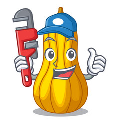 Plumber squash in a mascot fruit basket vector