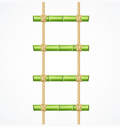 Realistic 3d detailed green bamboo ladder vector