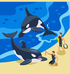 sea circus isometric background vector image