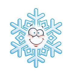 Snowflake Head Smiley vector image