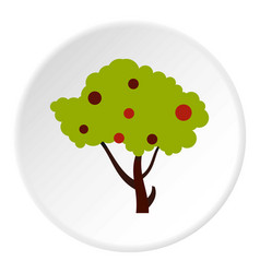 Tall tree with fruits icon circle vector
