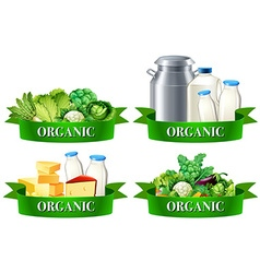 Various types of organic food vector image