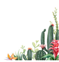 watercolor banner tropical flowers and vector image