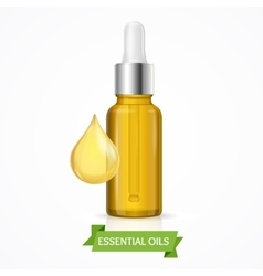 Dropper Essential Oil Bottle vector image
