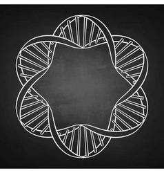 graphic dna circle frame vector image