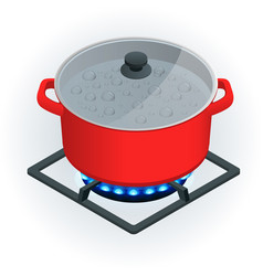 Isometric a pot on a gas cooker on a white vector