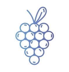 line delicious grape fruit to healthy nutrition vector image