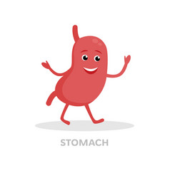 smiling stomach cartoon character isolated on vector image