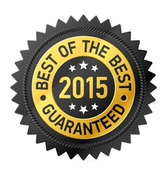 Best of the Best 2015 label vector image